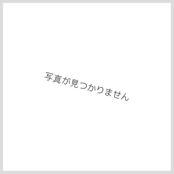 画像1: レオタード・スカート・ロングパンツ・ソックスのセット(ピンク) (1)